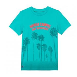 tish-palmiers