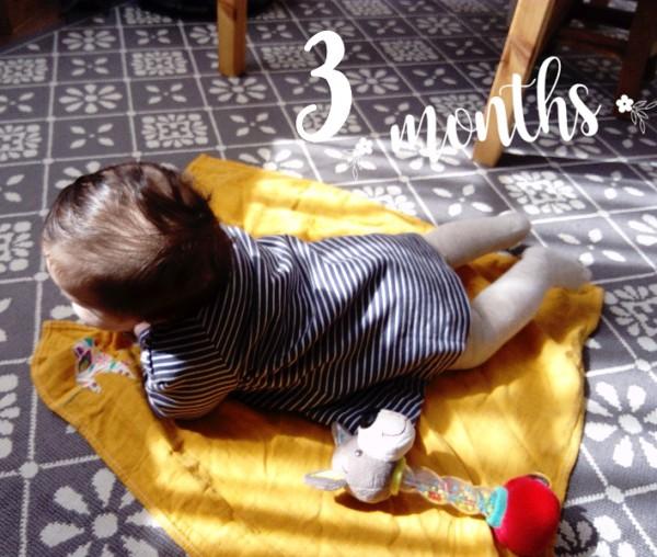 Alouette 3 mois