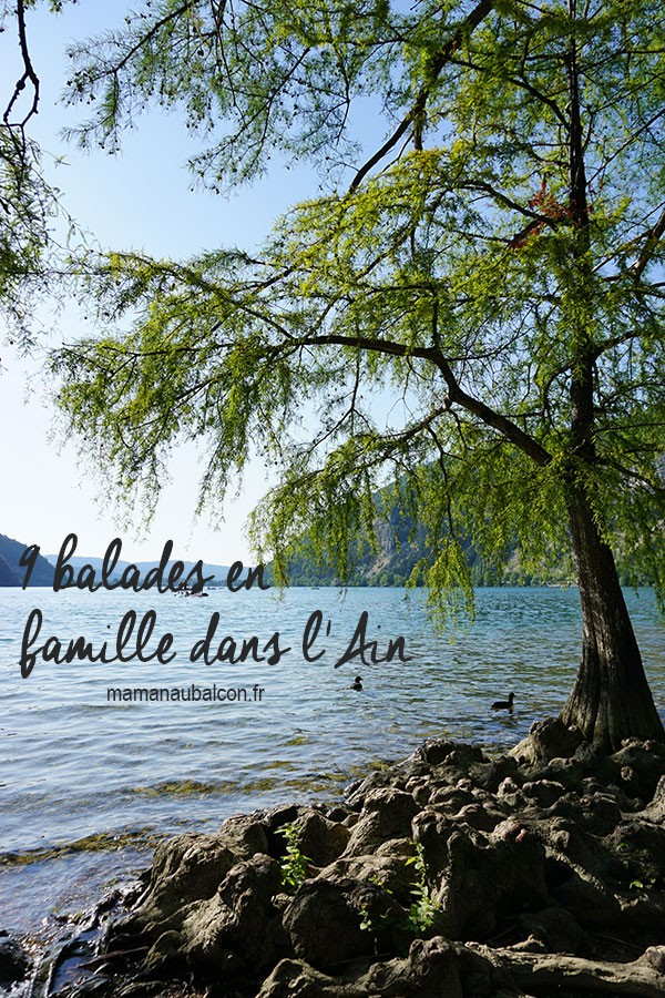 9-balades-en-famille-Ain-pin
